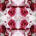 flower-box-01